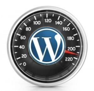 WordPress Page Speed | SEO Toronto