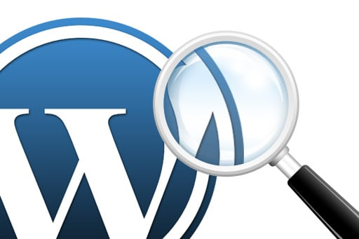 wordpress search suggest plugin