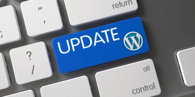 why update wordpress version theme plugins
